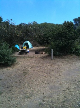 Manresa State Beach:                   Site #51: pretty private, pic taken from trail..so sits back from trail, small