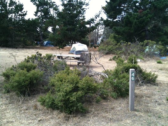 Manresa State Beach:                   site#46: typical site, large, open to trail, other sites and sky i.e. no shade