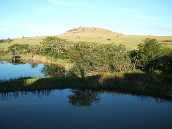 Nxala Ranch:                   View from bedroom veranda