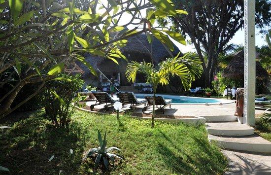Luna House Malindi :                                     piscine