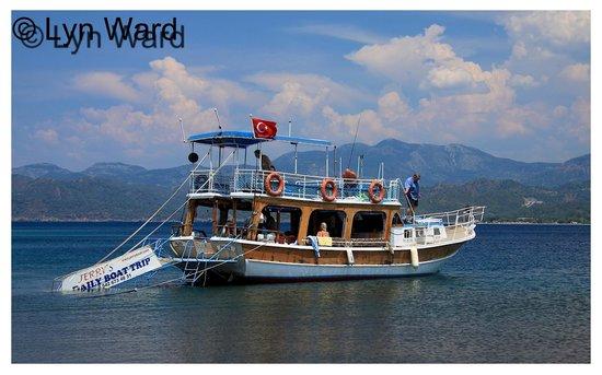 Jerry's Daily Boat Trip: Swim stop