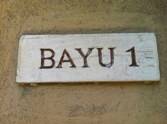 Ubud Green:                   Bayu 1