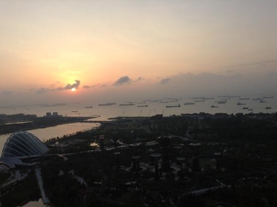 Marina Bay Sands:                   Blick aus dem 36. Stock