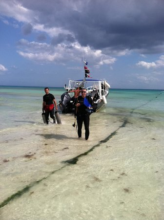 Club Med Cancun Yucatan:                   Scuba diving trip