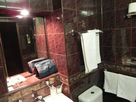Hotel Astrus:                   bagno