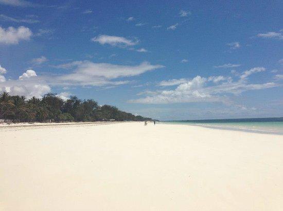 Baobab Beach Resort & Spa:                   Beach
