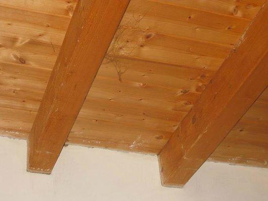 Il Salice:                                     ragnatele al soffitto della camera