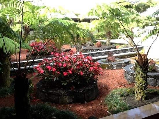 Hilo Seaside Hotel:                                     poolside courtyard