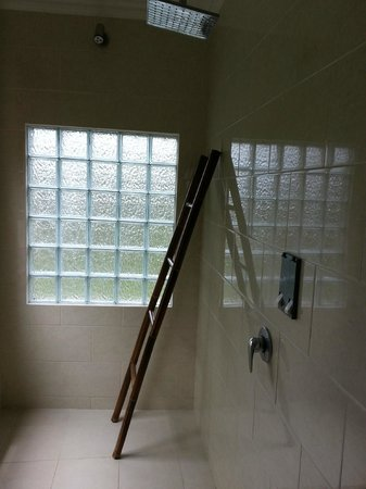 Gusde House & Villa:                   shower area and Bali style towel rack