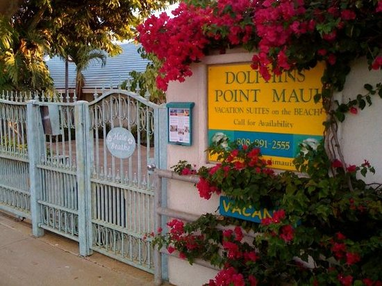 Dolphins Point Maui : Welcome!