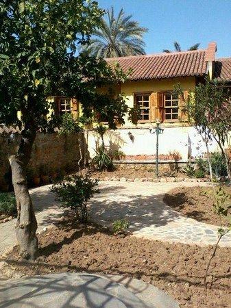 Villa Tulipan:                                     Garden view