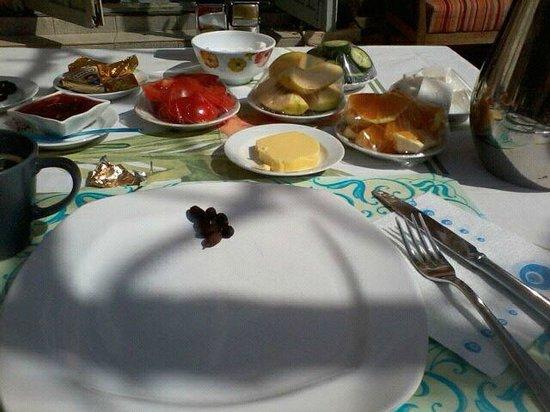 Villa Tulipan:                                     Breakfast