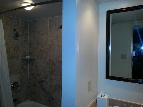 Dauphine Orleans Hotel:                   salle de bains