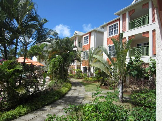 Bay Gardens Beach Resort :                   Rooms