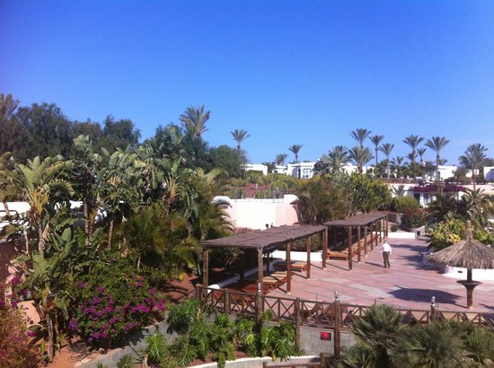 Hotel HL Club Playa Blanca:                                     view