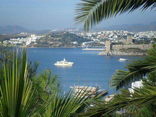 Hotel Manastir:                   vista da varanda                 