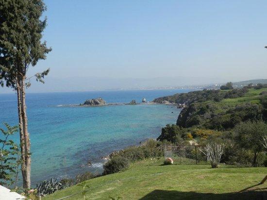 بيراموس هوتل:                   cyprus                 
