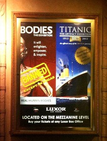 Bodies The Exhibition:                   double exhibition @ Luxor- $48.