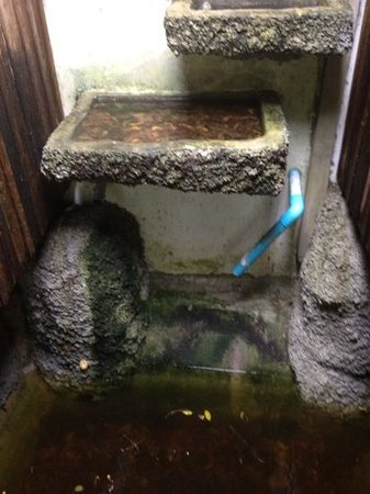 เอซี รีสอร์ท:                   bathroom water going to pond at front door