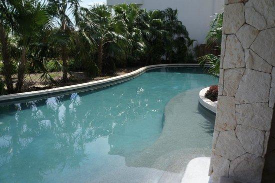 Secrets Maroma Beach Riviera Cancun:                                     Swim Out Pool