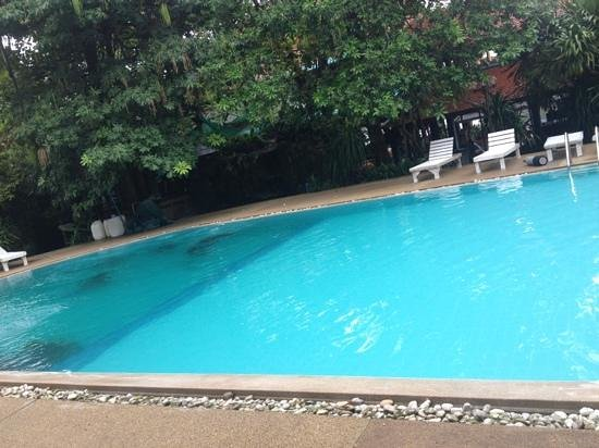AC Resort:                   pool looked clean and private