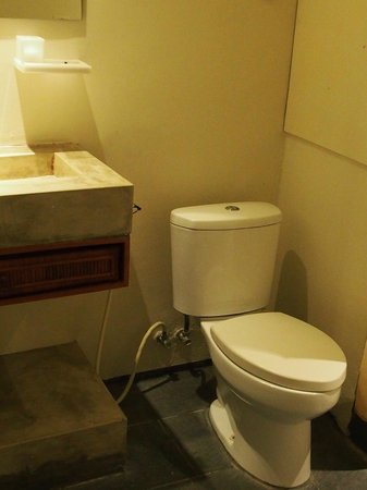 Jocs Boutique Hotel & Spa:                   toilet and the concrete basin