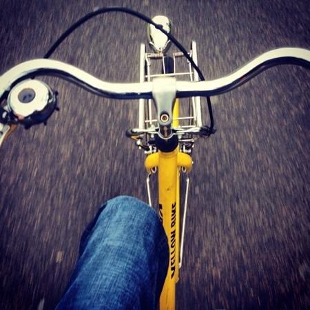 Yellow Bike Tours & Rental :                   Riding around Amsterdam on a Yellow Bike tour.
