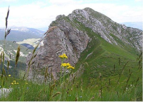 Sinj, Croatie : Mountain view