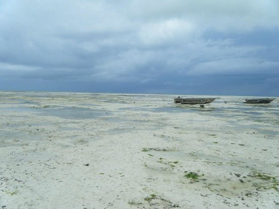 Uhuru Beach :                   When the tide goes out - it goes out for miles!