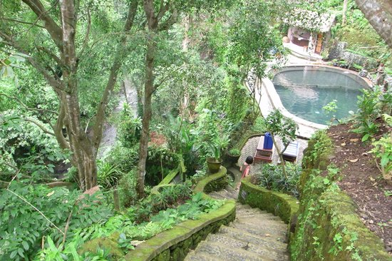 Hotel Tjampuhan & Spa:                   Pool next to a forest and river
