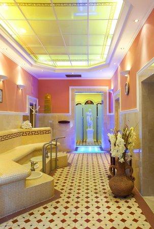 Danubius Health Spa Resort Nové Lázně: Wellness