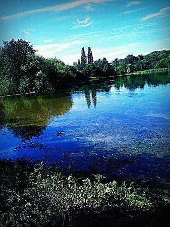 Sevenoaks Wildlife Reserve