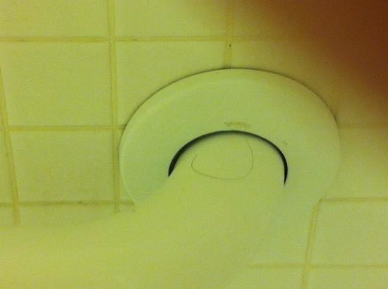 Best Western Palm Beach Lakes Inn:                   Unclean shower handle and hair
