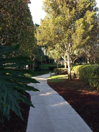 The Ritz-Carlton Golf Resort, Naples :                   walking
