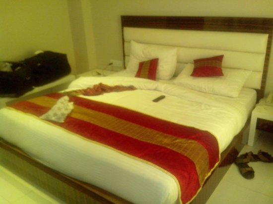 Hotel Gulnar:                   Room