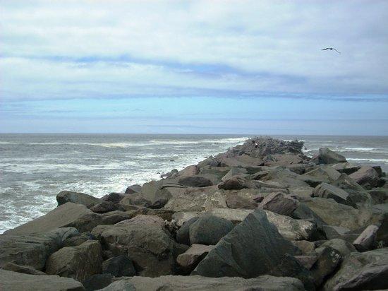 Ocean Shores Inn & Suites:                                     Jetty Time