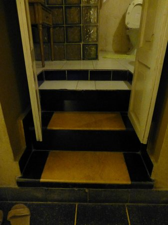 Ranjit's SVAASA :                   uneven steps to smelly bathroom