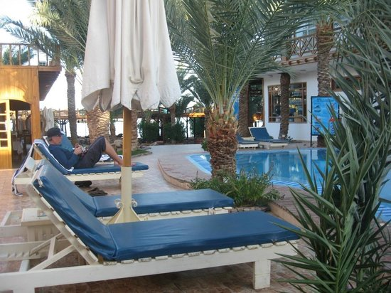 Acacia Dahab Hotel:                                     Pool view to the dive center