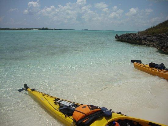 写真Out-Island Explorers Day Charters枚
