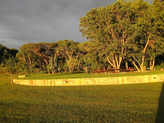 Malandela's Guest House:                   Vistas of green