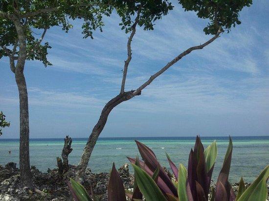 Karamba :                   Aussicht vom Pool