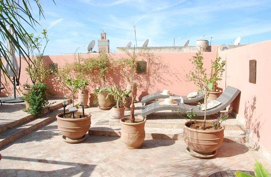 Riad Charme d'Orient:                                     Sur la terrasse ...