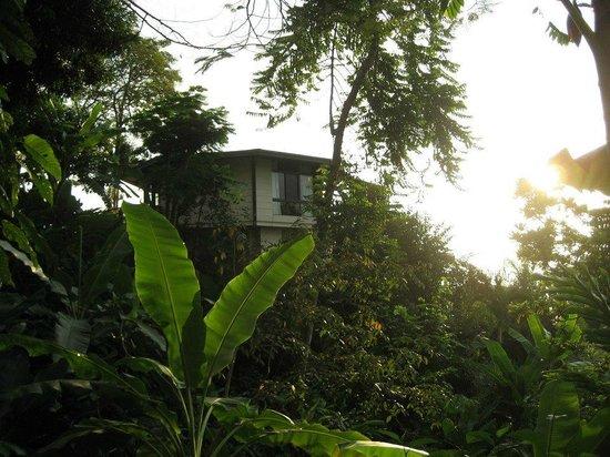 Tulemar Bungalows & Villas:                                     Bungalows