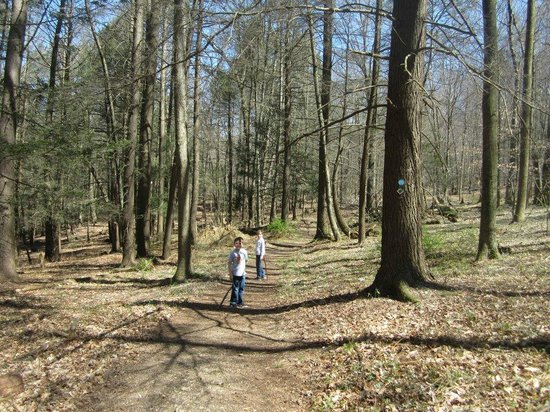 Omni Bedford Springs Resort:                   One of four trails