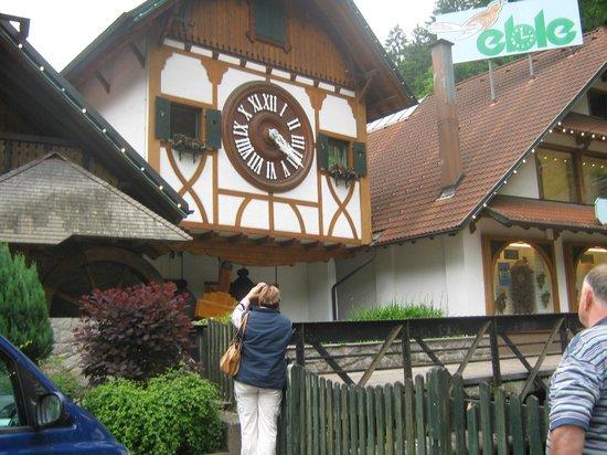 Landgasthof Rebstock:                   Шварцвальд