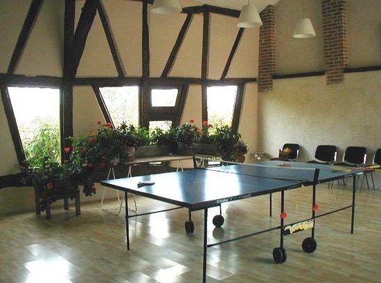 Le Nid a Bibi : Salle polyvalente avec table de ping-pong