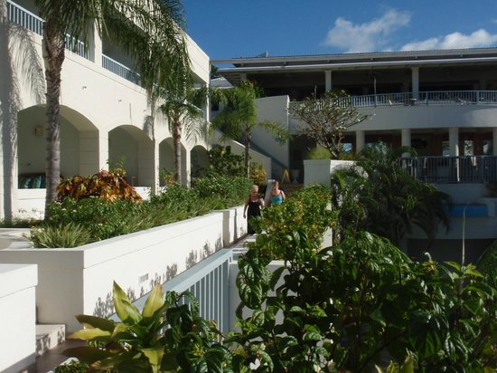 Savannah Beach Hotel:                   hotel & grounds