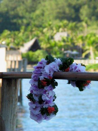 Likuliku Lagoon Resort:                   Desde la terraza