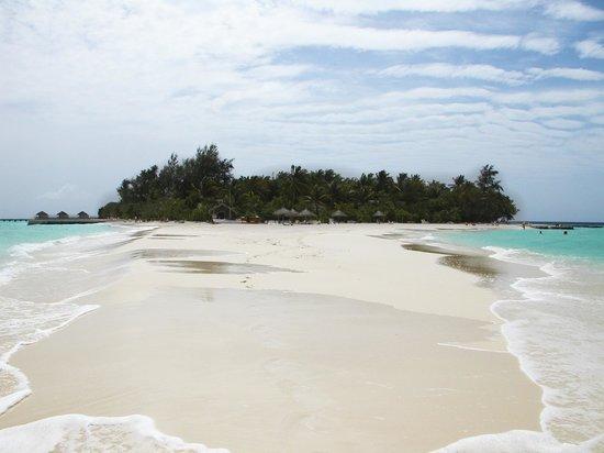 VOI Maayafushi Resort:                   L'isola