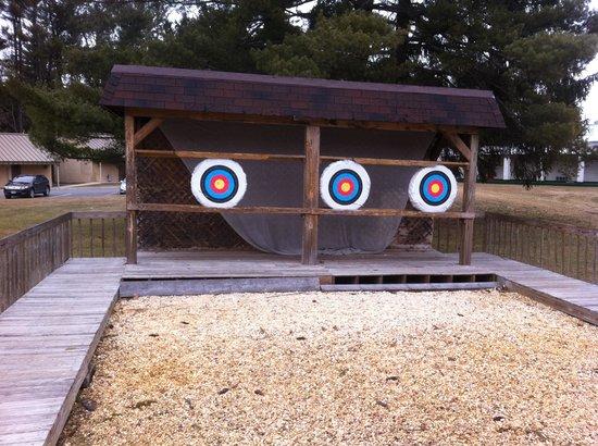 Pocono Palace Resort:                   Archery was so much fun!